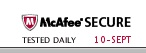 mcafee secure online shopping logo